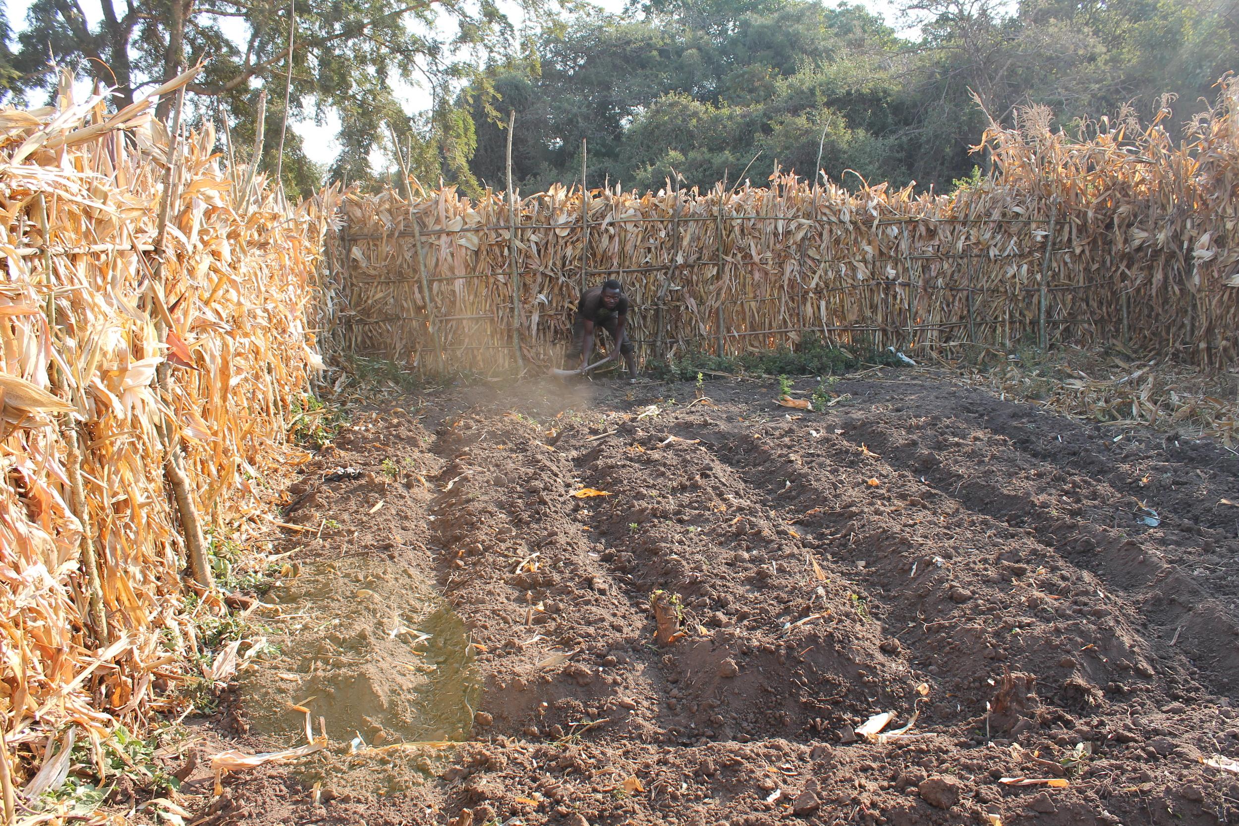Dothi Village children's garden