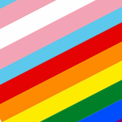 Wear Your Pride -