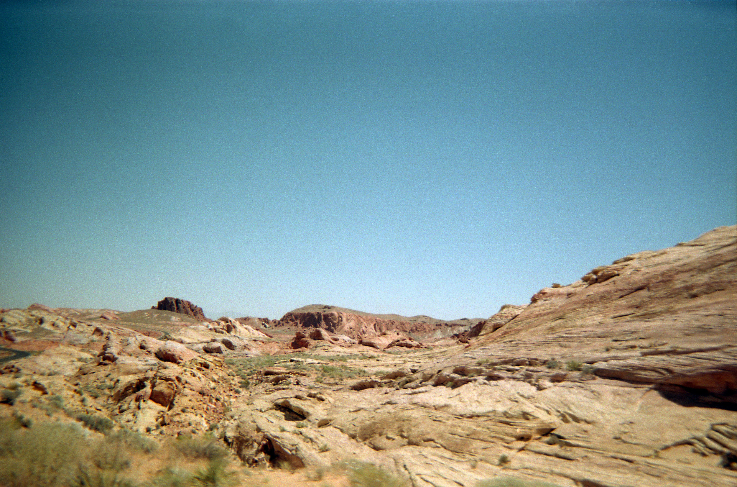 Vegas_Disposable006.jpg