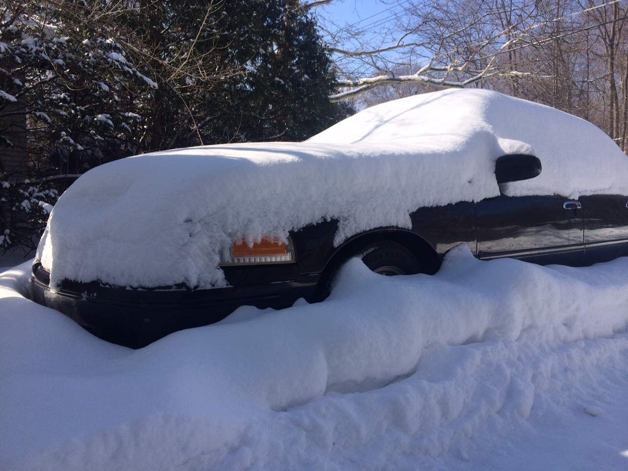 <strong>Black Sedan gets snowed in</strong>