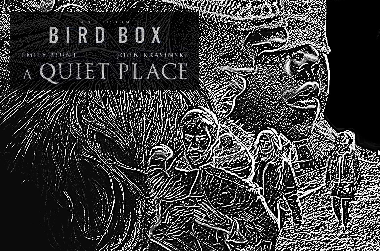 BirdBox-01.jpg