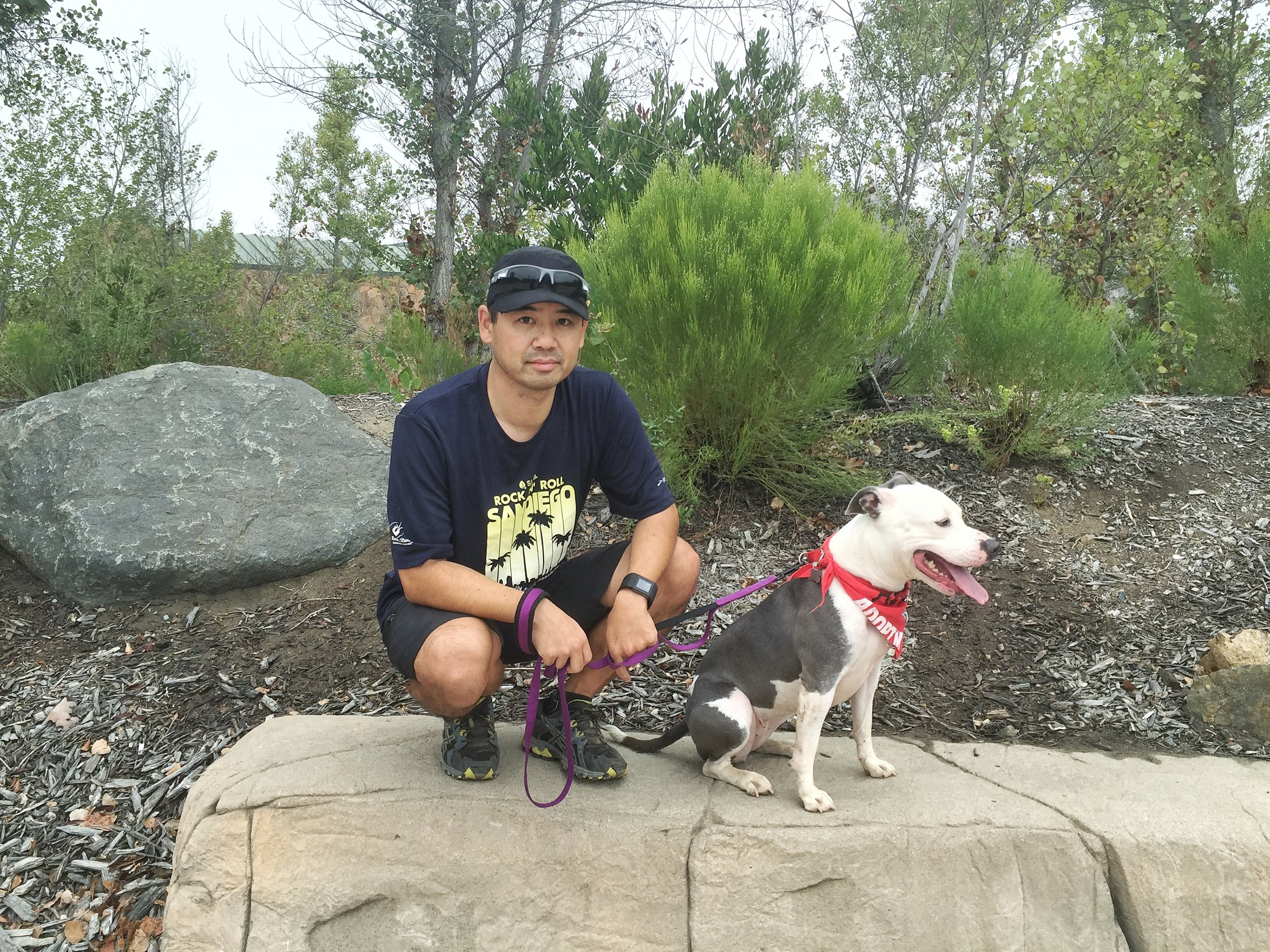 Meeting up with Rinny a few weeks after we returned her to the Barking Lot rescue shelter.