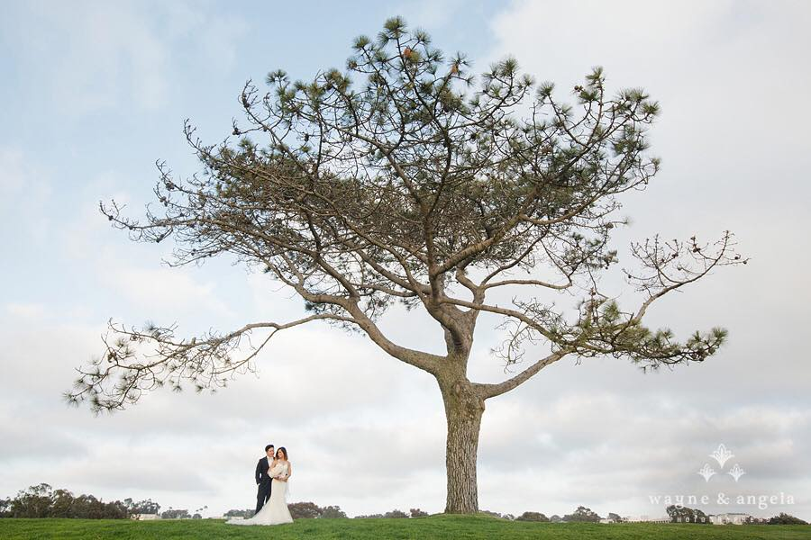 Kevin and Denise share a post ceremony moment under a tree at the Lodge at Torrey Pines.