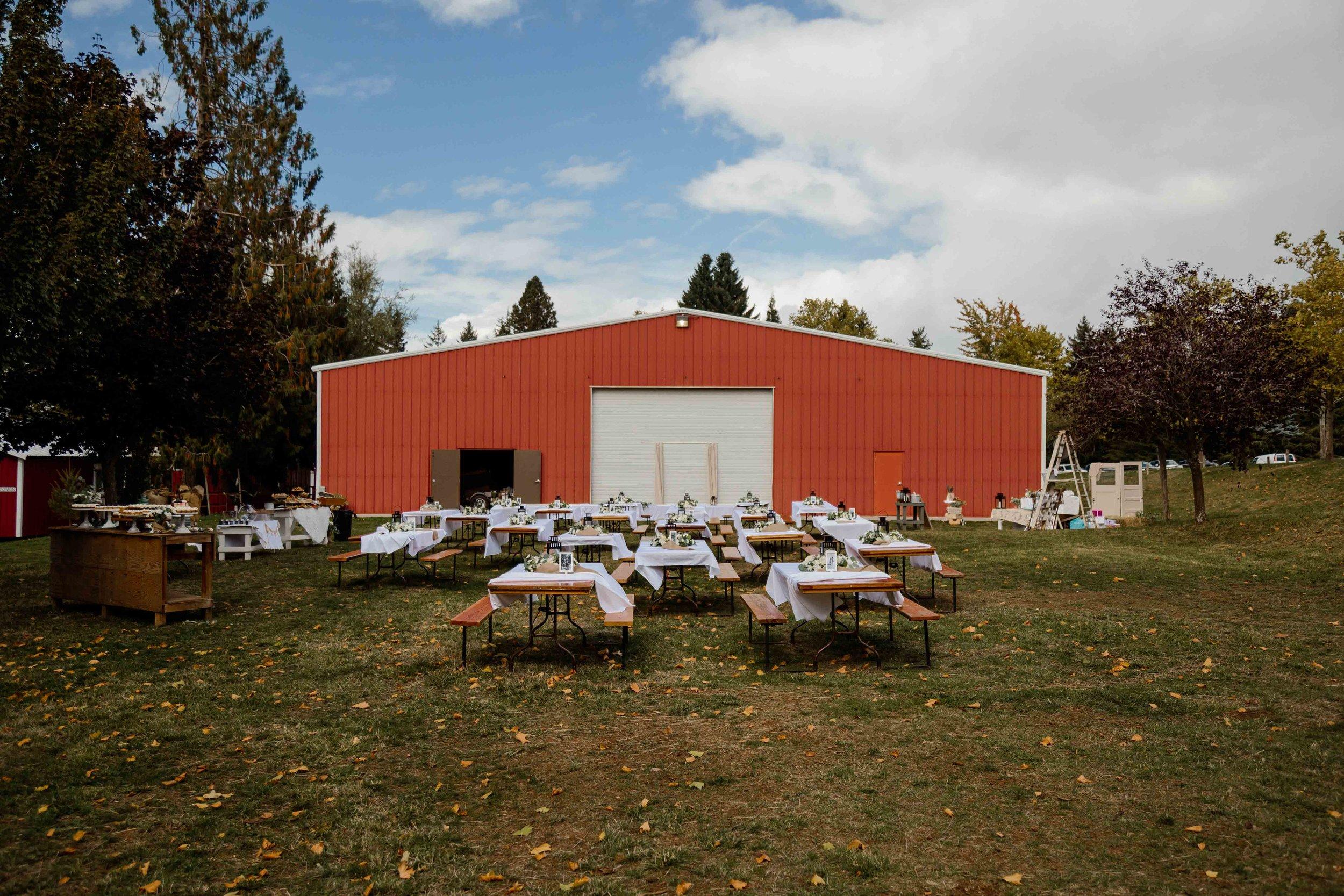 vineyard wedding summer fall oregon corgi rustic wedding-71.jpg