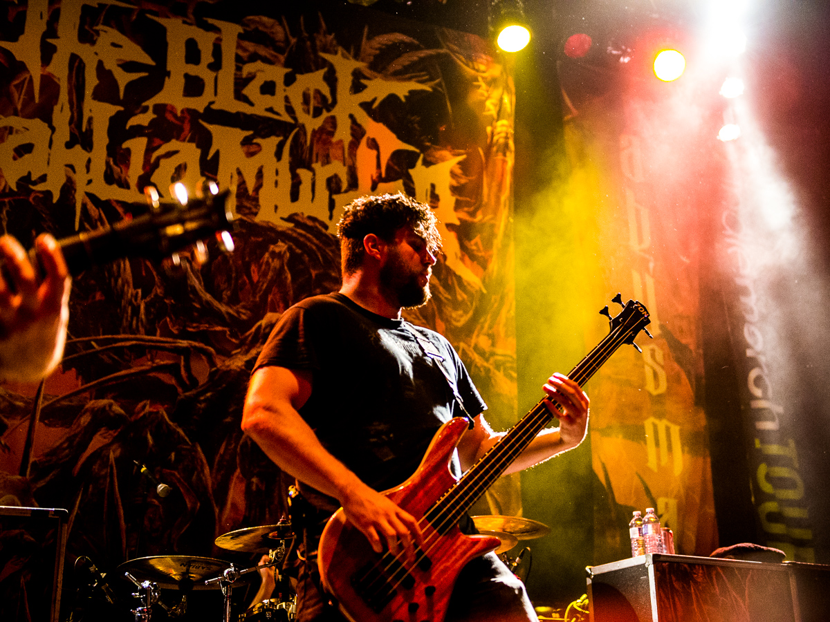 4_The_Black_Dahlia_Murder_Rickshaw_Timothy-Nguyen_13October15-4.JPG