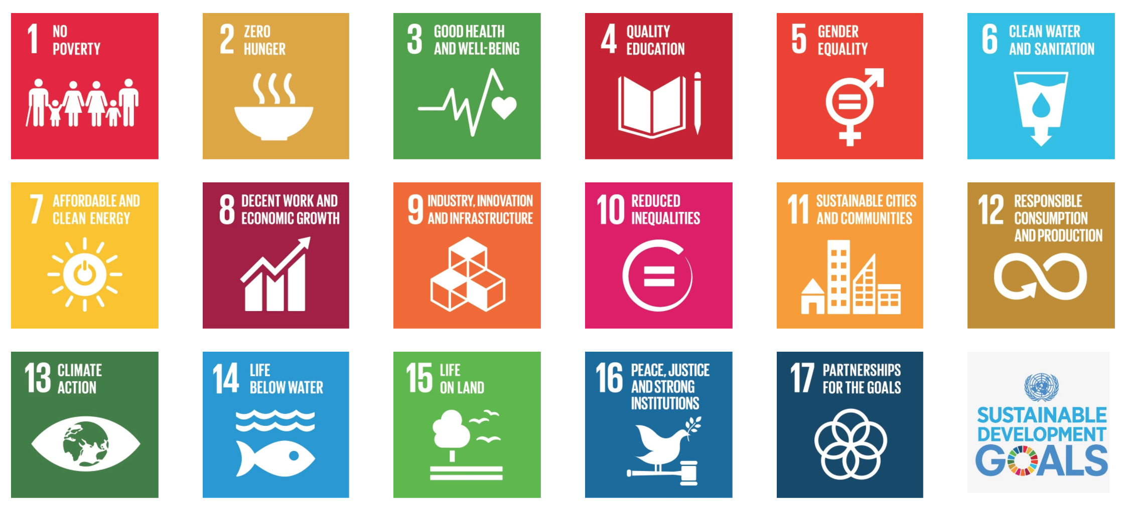 Sustainable Development Goals by the UN