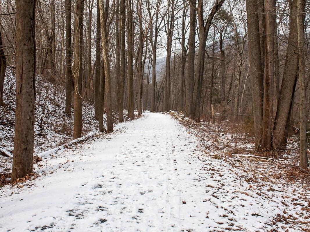 20150123 KG Therman Madiera in Winter.jpg