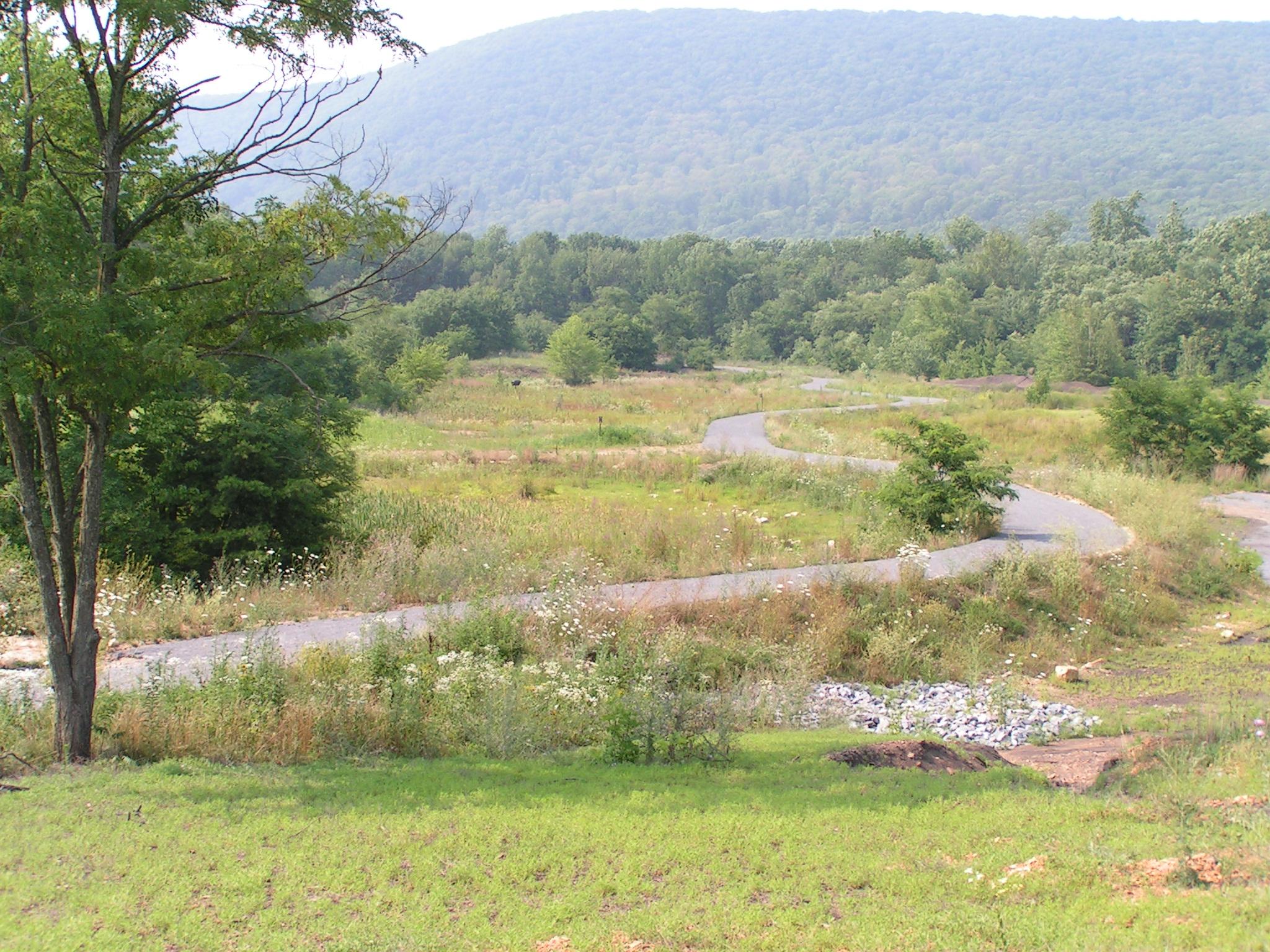 20080720 Trail Grants Work 016.jpg