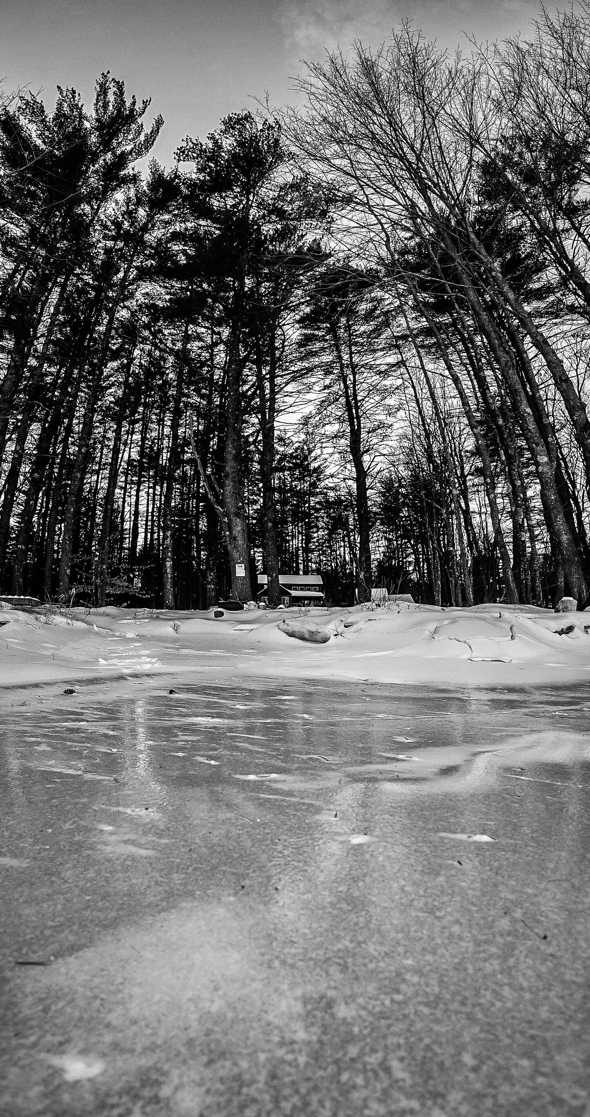 Maine-17.jpg
