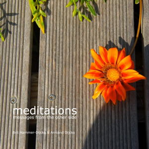 Meditations: Messages From the Other Side