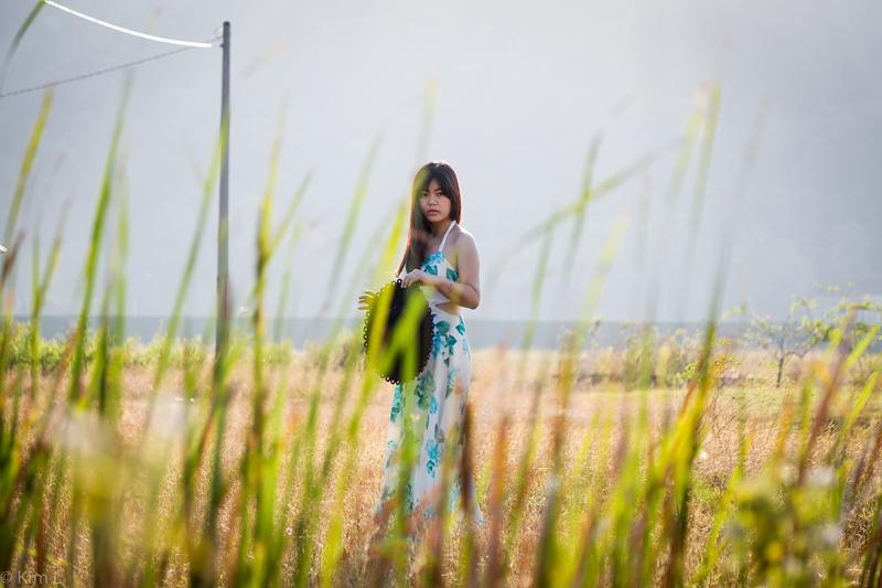 Langkawi-field-31.jpg