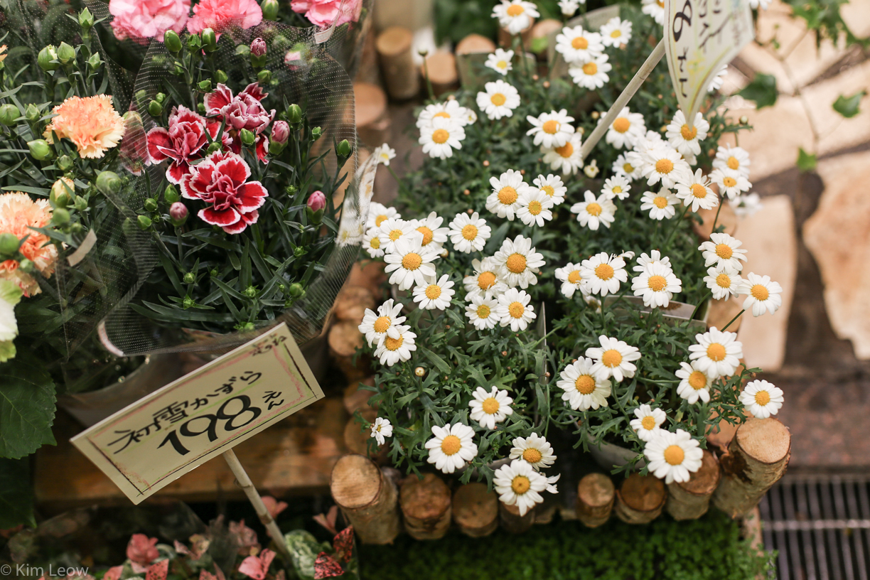 kimleow_cherryblossom_kyoto_travel-13.jpg