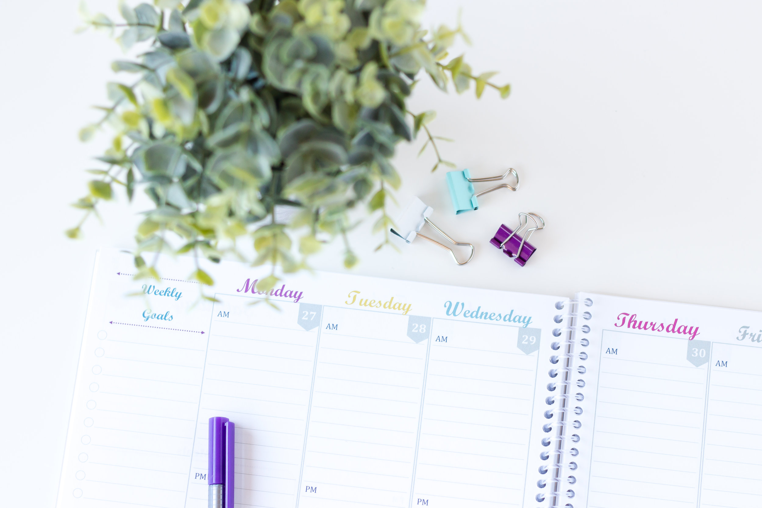 picture about Printable Life Planner known as June 2019 - Could possibly 2020 Dwelling Lifestyle Printable Planner and House Handle Printables Plum Cheeky Expert services-Lovin This Mother Everyday living