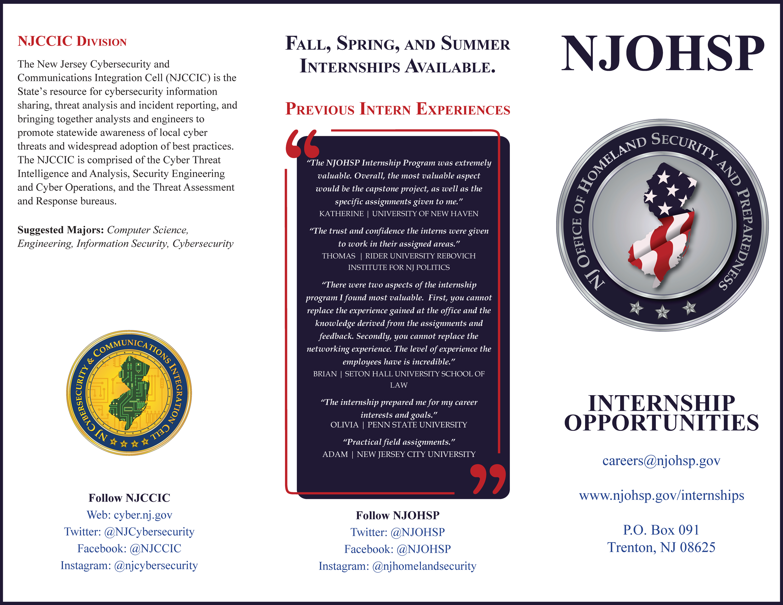 Internship_Trifold_2019_Page_1.png
