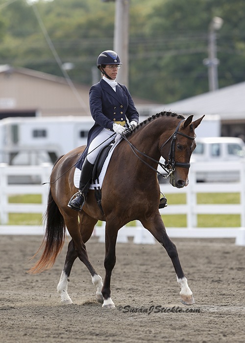 HEATHER MASON RIDING RTF LINCOLN AT THE PRIX ST. GEORGE LEVEL.