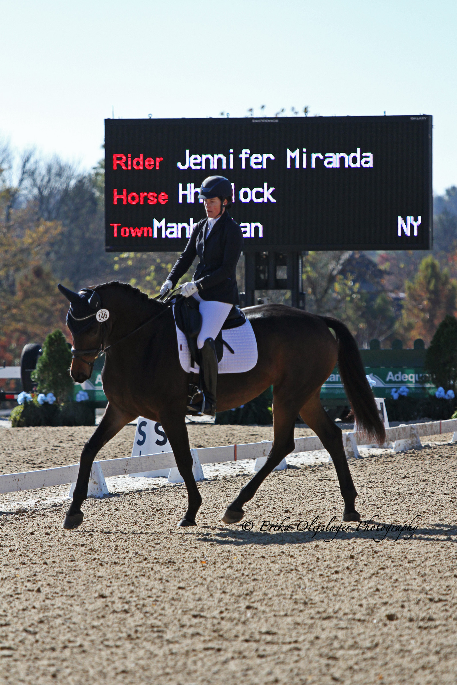 Jennifer Miranda & Hhemlock   Competed in the 1st Level and 1st Level MFS Championships