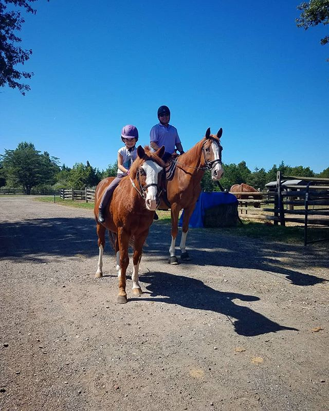 More twinning, father-daughter sightings this weekend at the farm! Someone forgot their saddle this time! #nosaddlenoproblem #gingerella #wonderboy