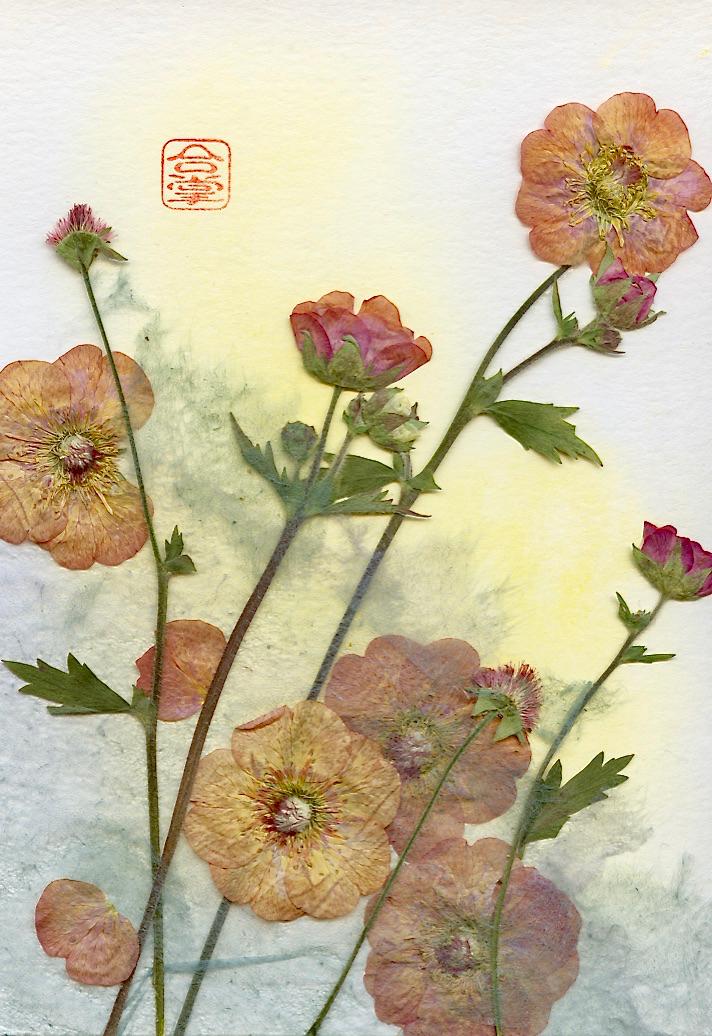 ornage flowers 2017 1.jpg