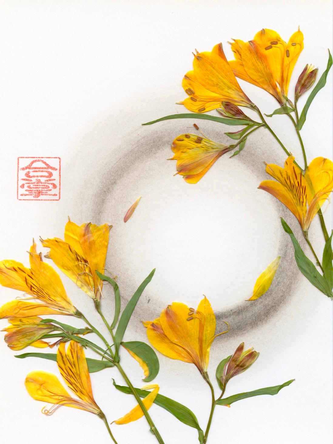 yellow lilies 2018.jpg