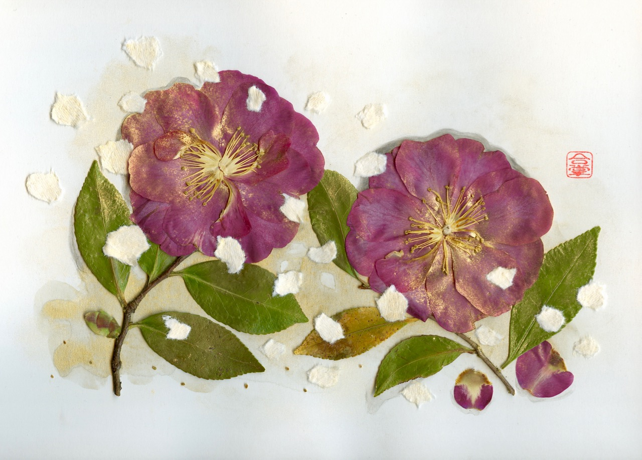 red camellias 2018-1.jpg