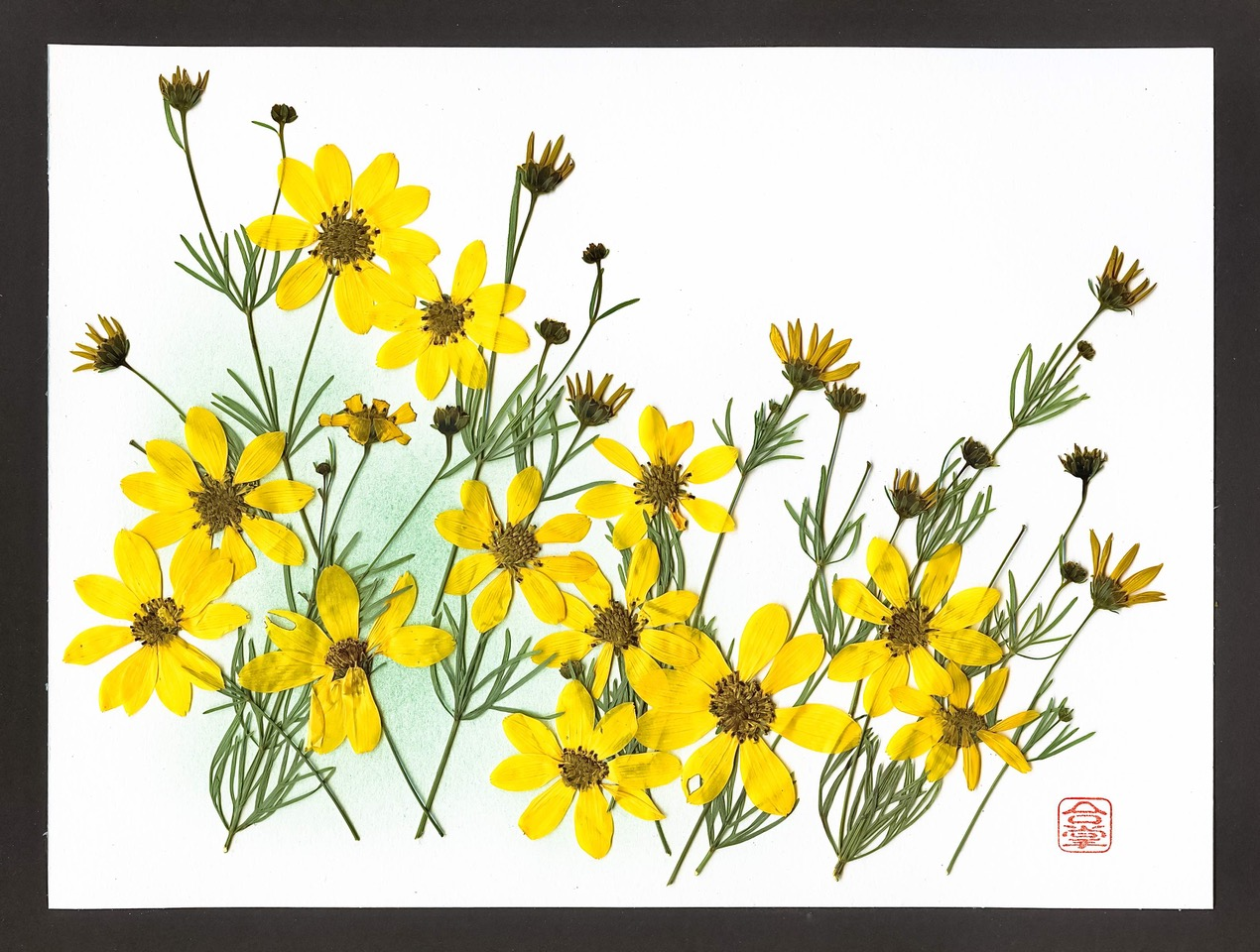 summer yellow flowers with green bgd 2018-5-1.jpeg