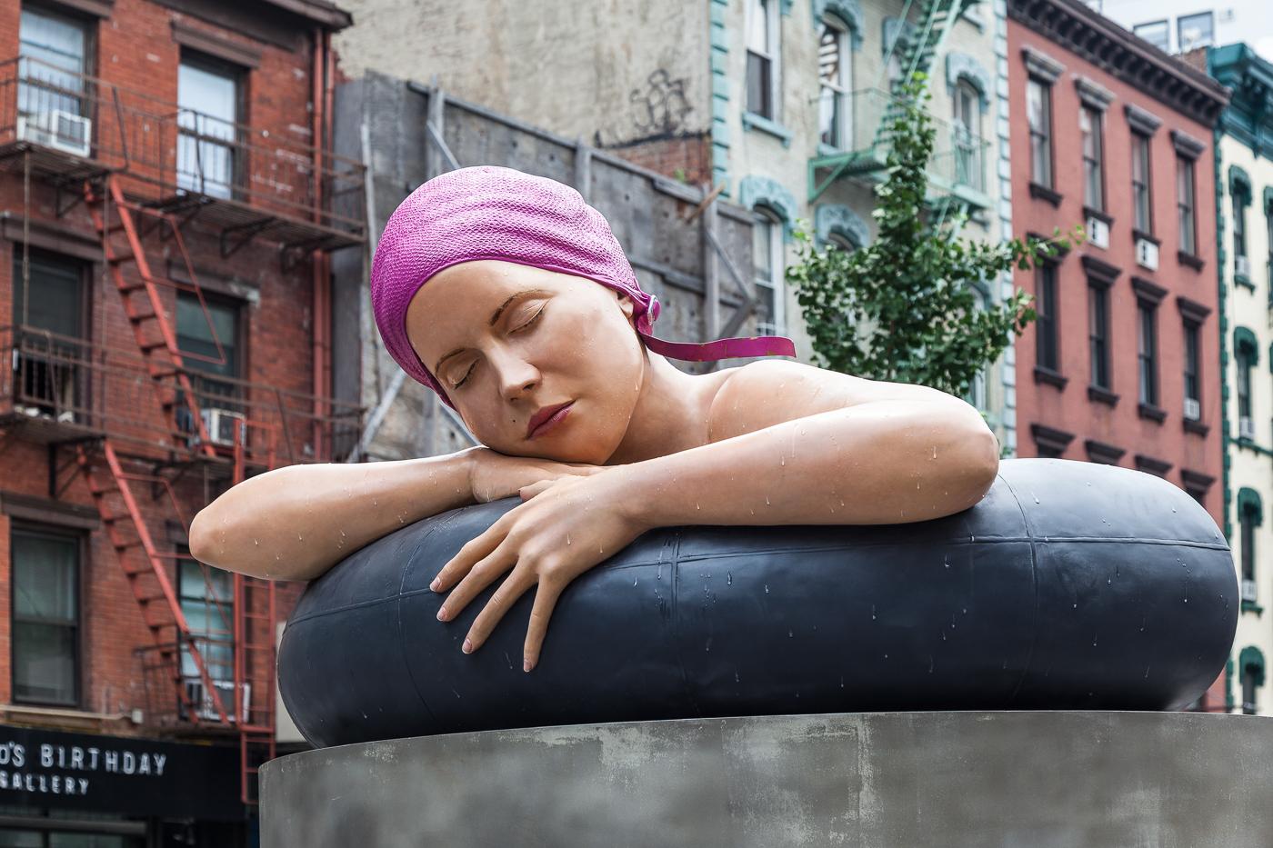 Survival of Serena, New York