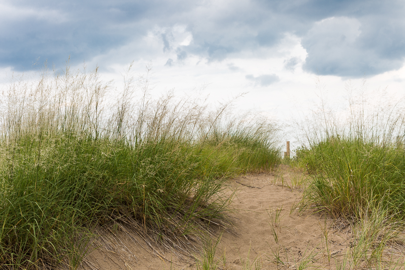 The Dunes of Ipperwash Beach