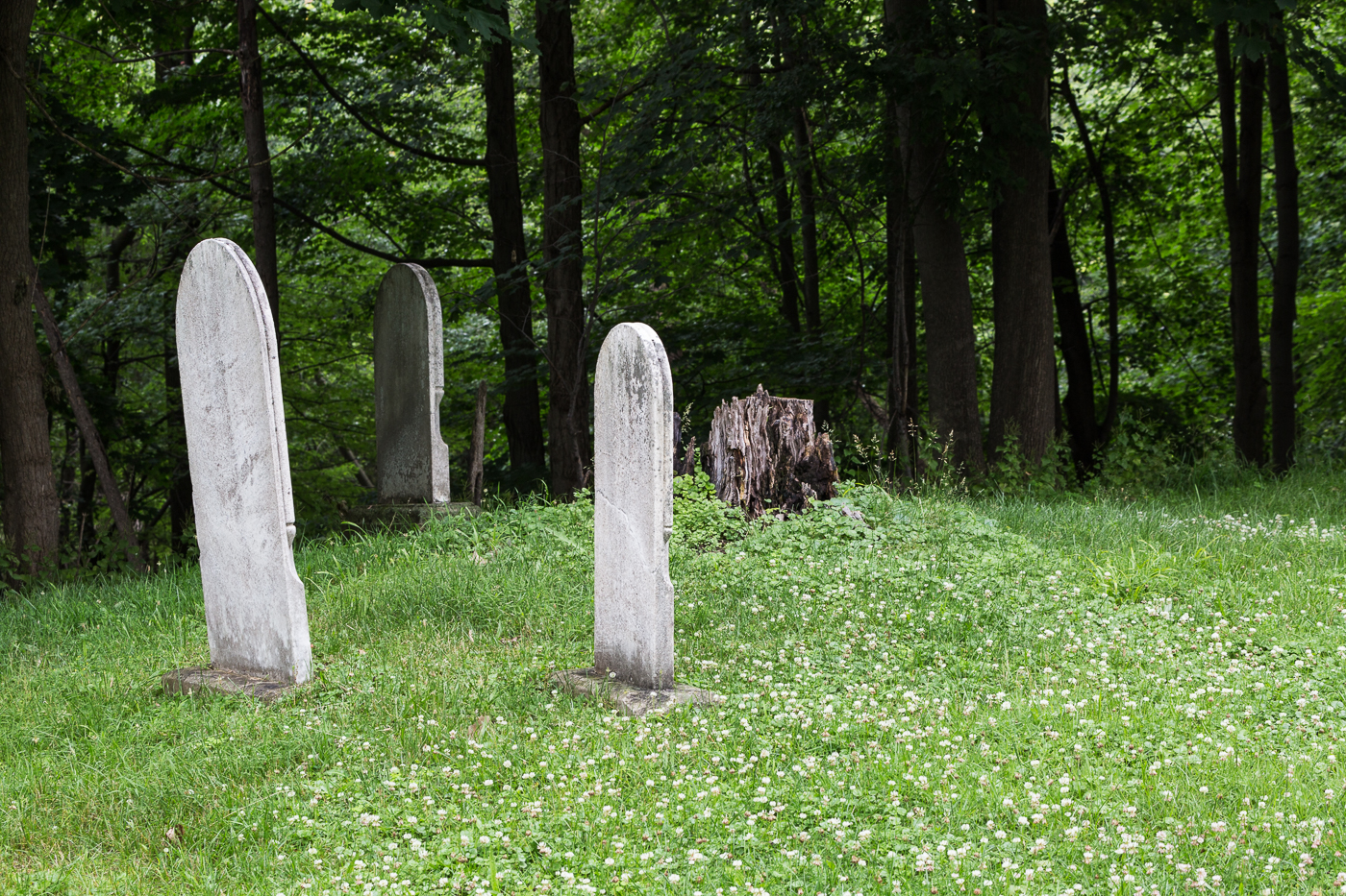 Old tombstones at the edge of the ravine