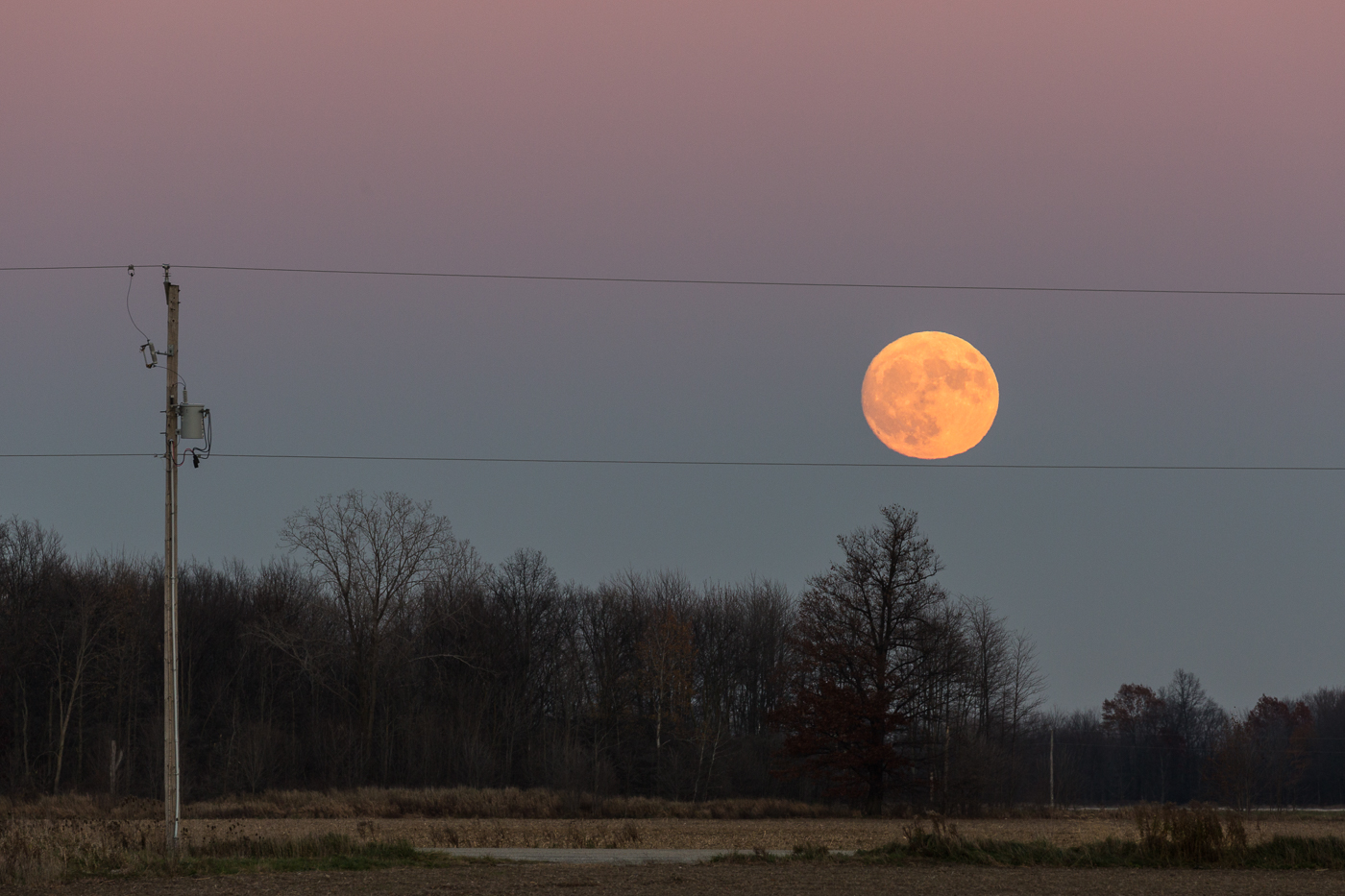 Supermoon Rising in Lambton County