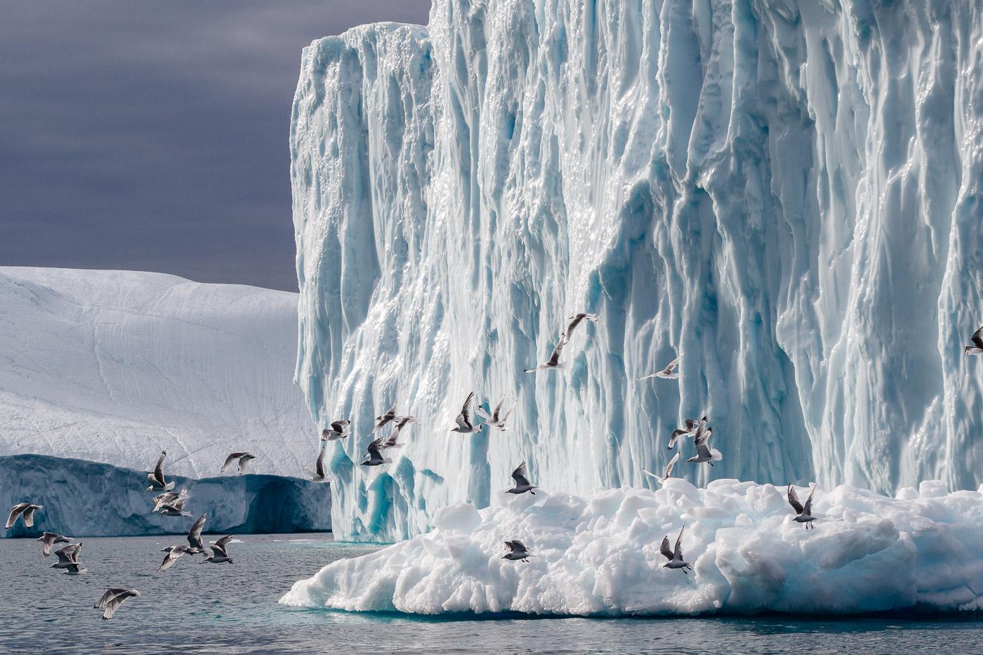 Leaving the Iceberg