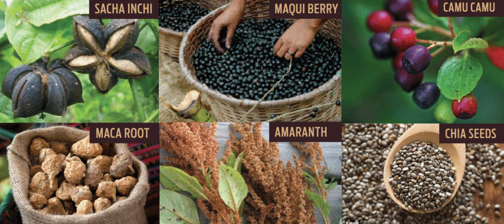Ka'Chava is made up of 6 Plant-based Super Foods