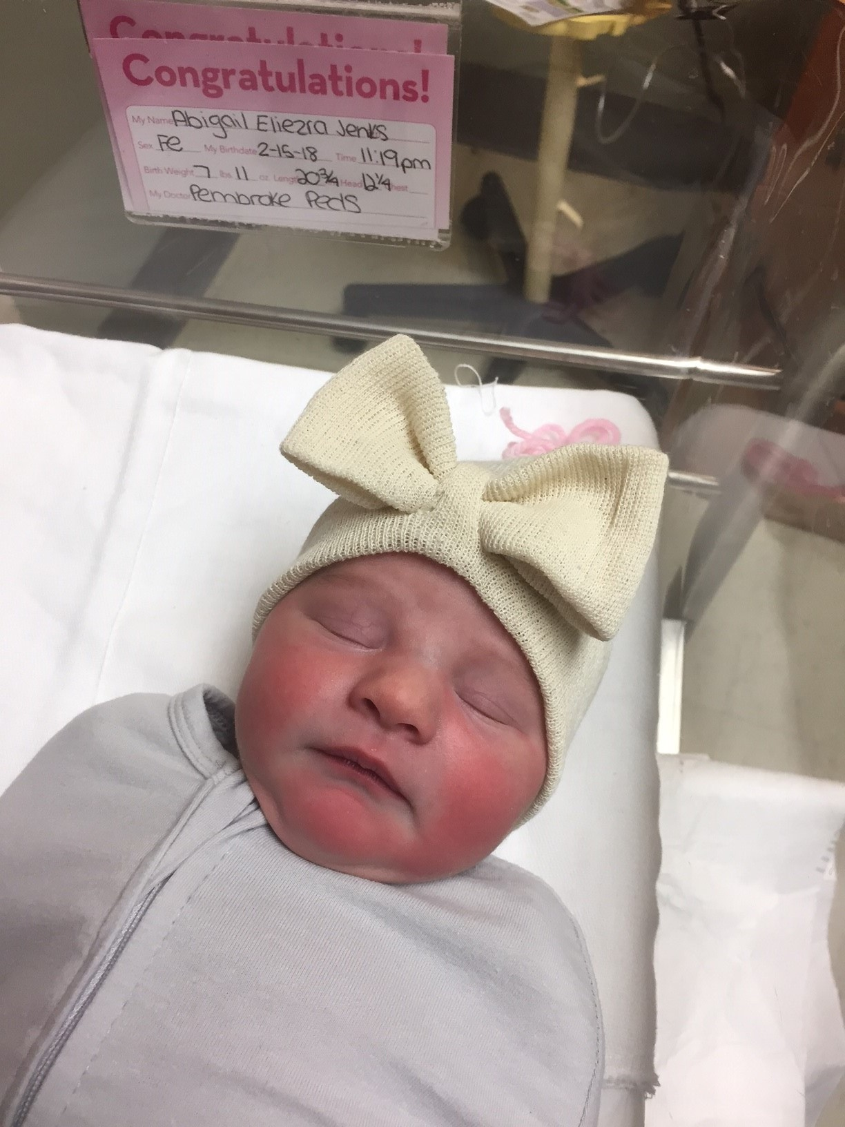 Update: Welcome Abigail Eliezra Jenks - On February 15, 2018 Abigail was born, and on February 16 we welcomed her into our family.The years of waiting, believing, and trusting for God to bring children to our family, have given way to euphoric joy and gratefulness to the Lord as we celebrate the arrival of this precious promise.Thank you for all who have been praying and believing with us on this journey!- Stephen, Veronica & Abigail