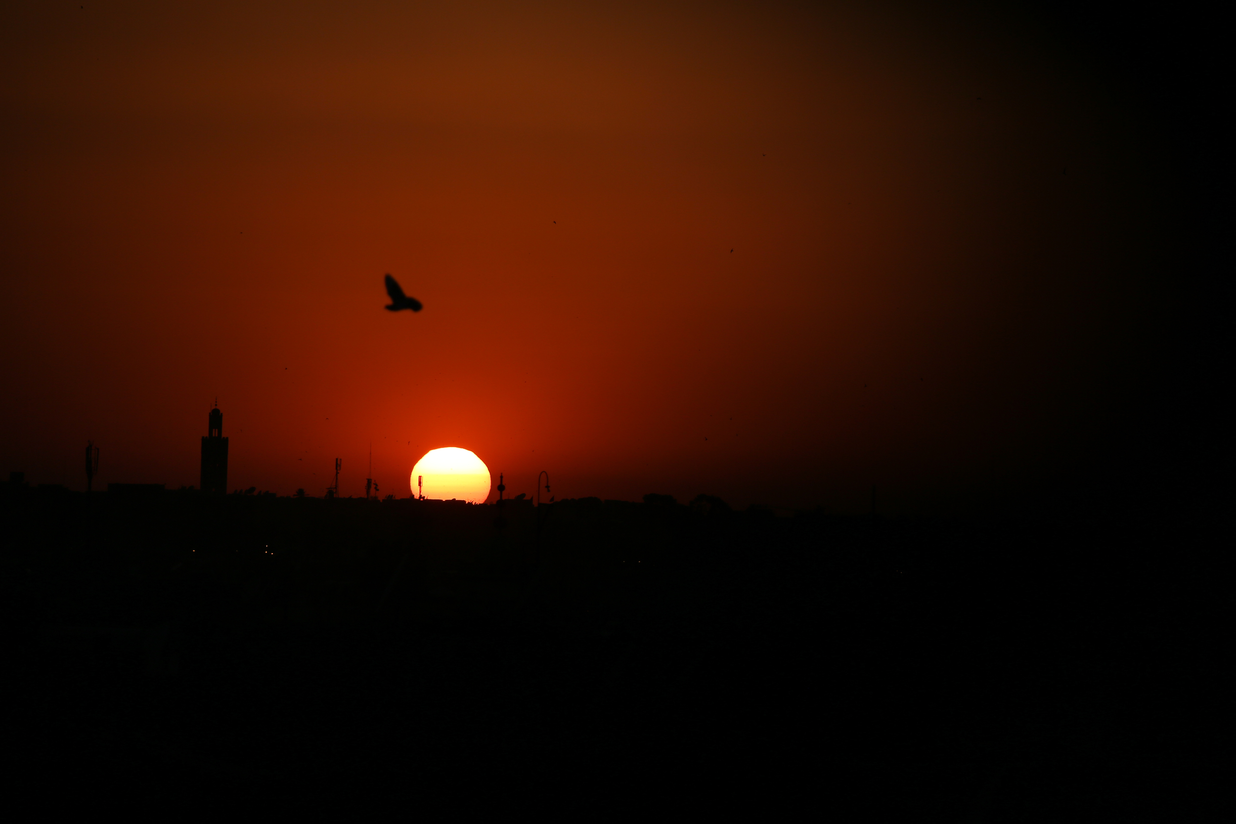 JeanetteSha_Morocco-2.jpg