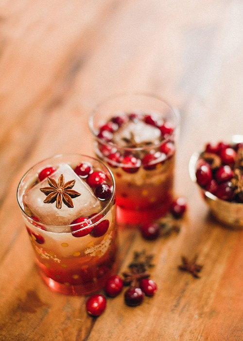 Cranberry Borubon Fizz with Star Anise Garnish.jpg