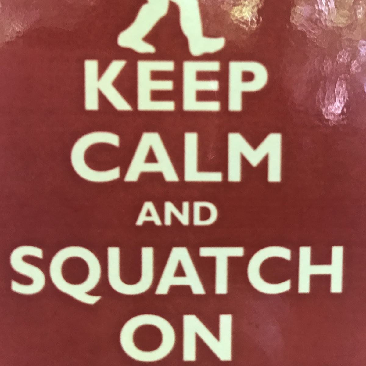 keep_calm_and_squatch_on