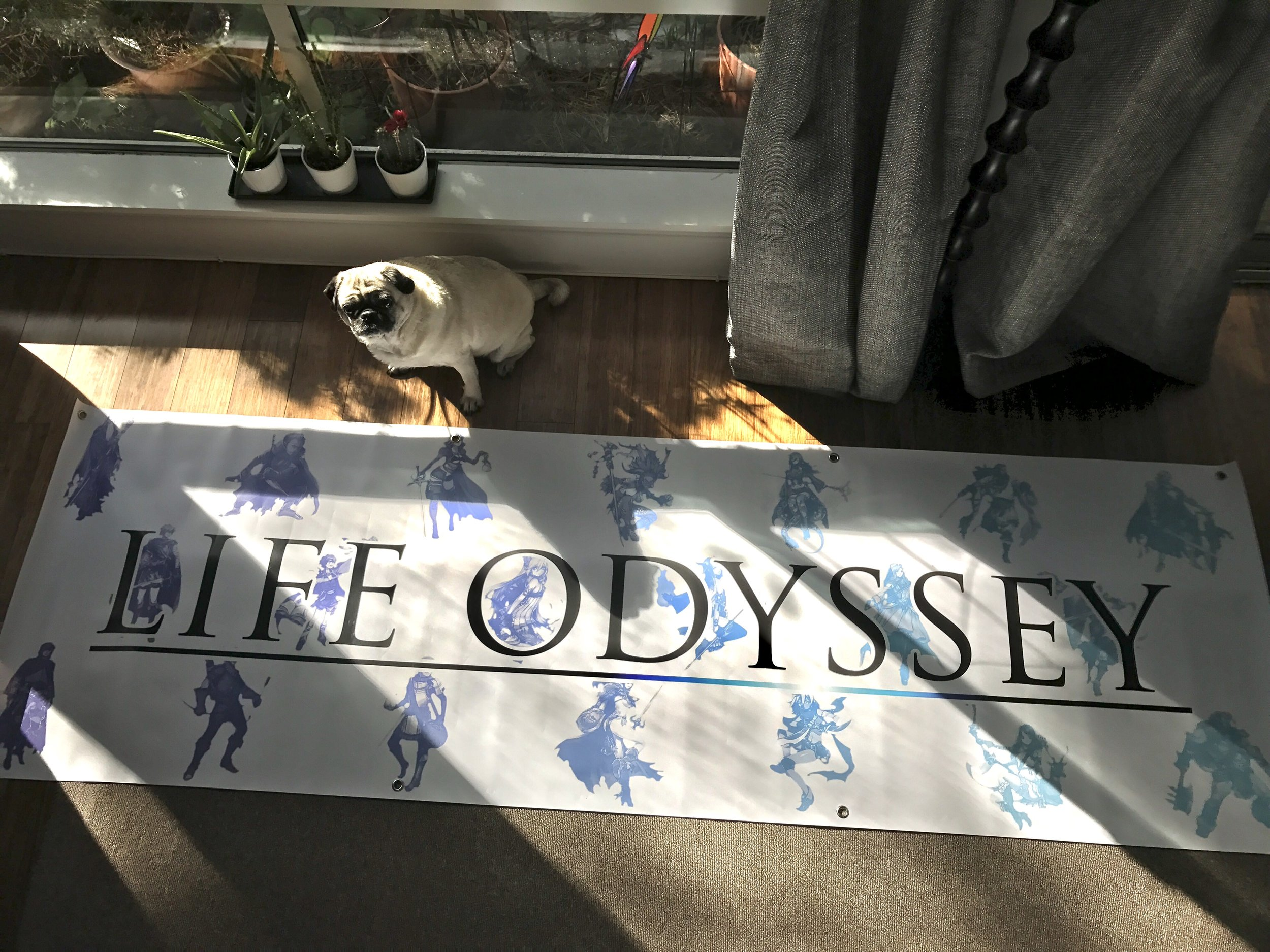 (Xena, the pug, modeling my GDC banner.)