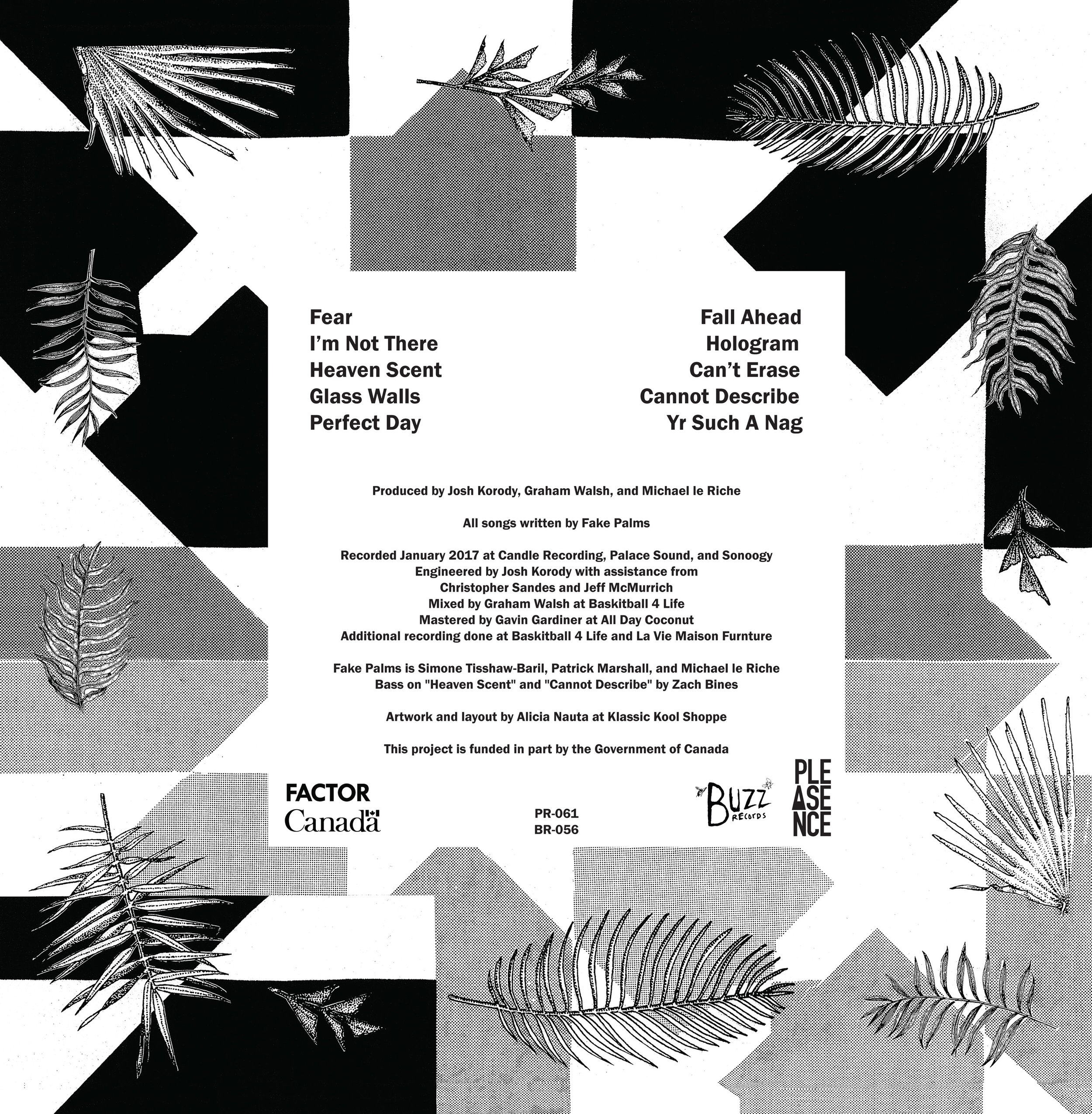 """back cover  Fake Palms, Pure Mind 12"""" LP  2017"""