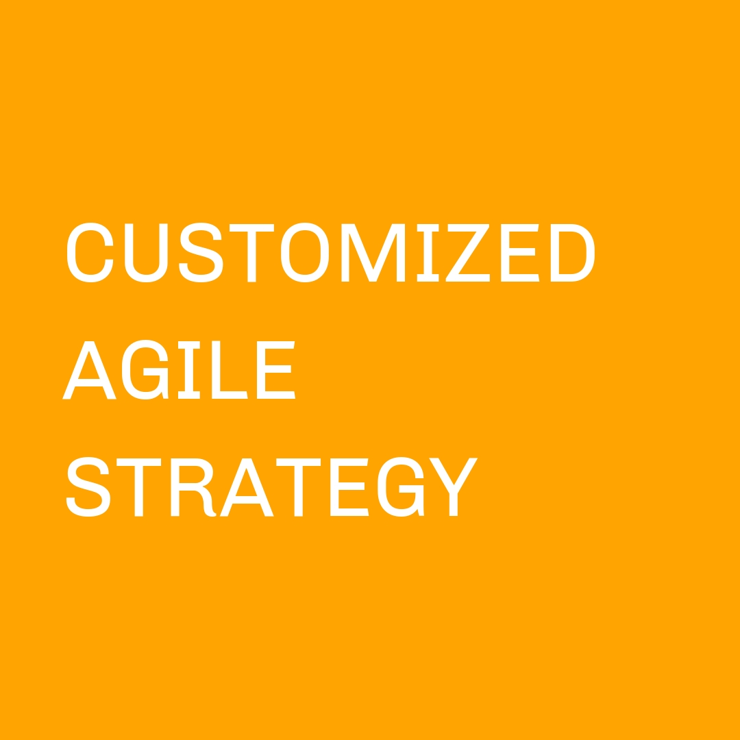 Customized Agile Strategy