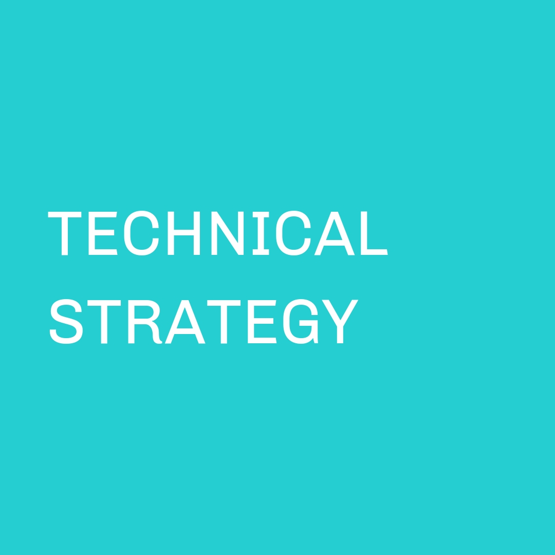Technical Strategy Services