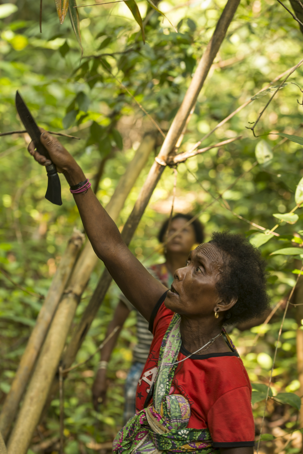 One of the Batek ladies foraging in the jungle.
