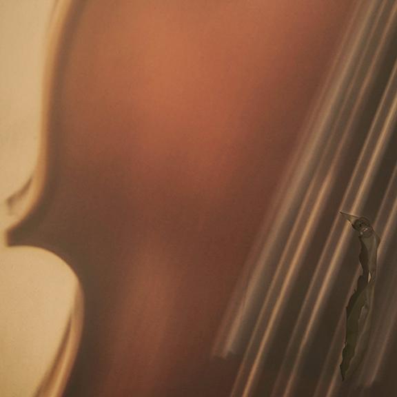 sromero violin1.jpg
