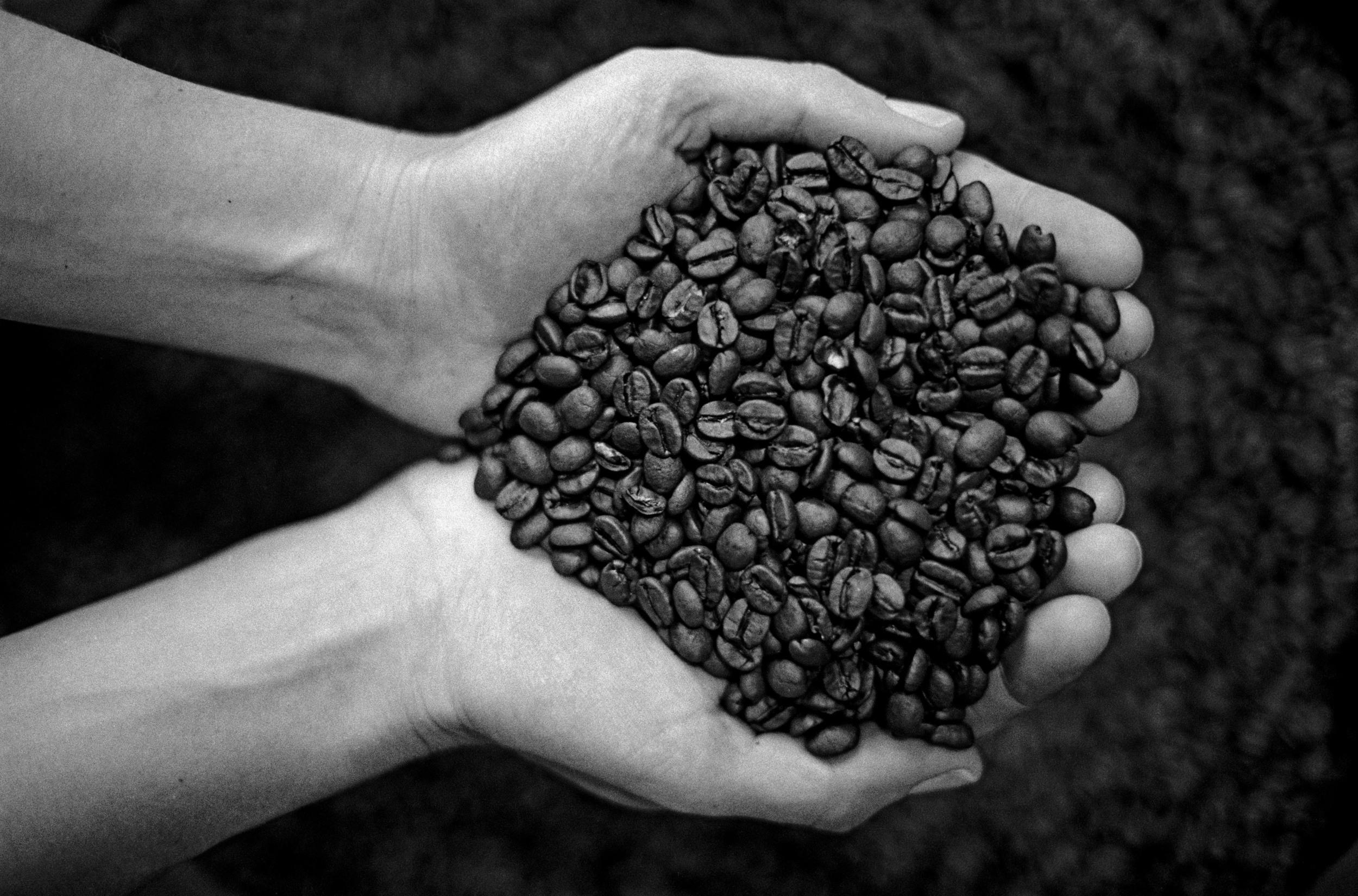 Mr.Espresso-18.jpg