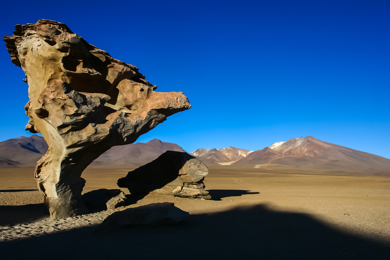 dkatz-landscape-final-1500px_009.jpg