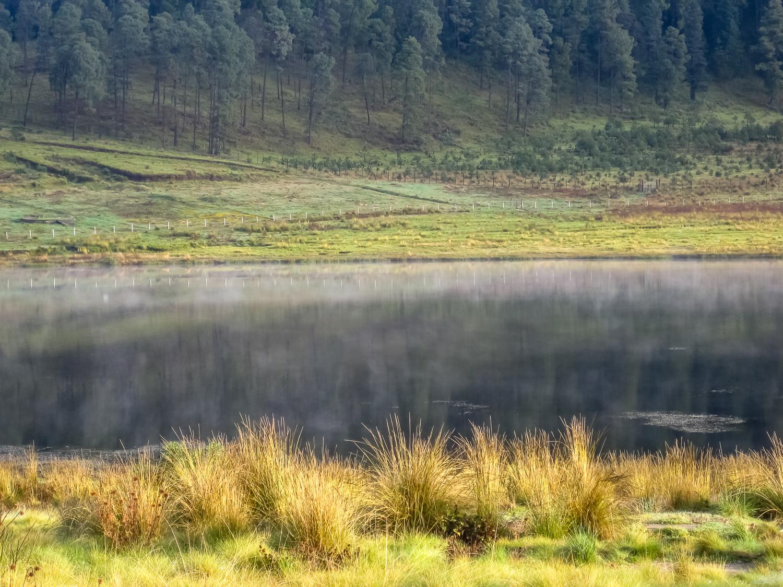 dkatz-landscape-final-1500px_020.jpg
