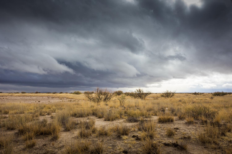 dkatz-landscape-final-1500px_047.jpg