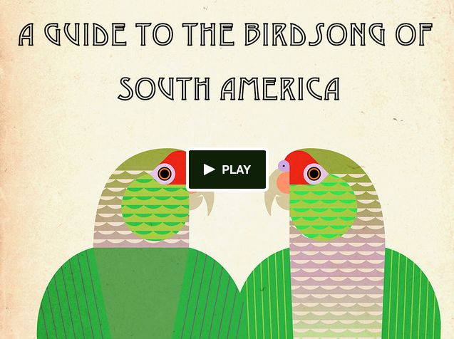 A Guide to the Birdsong of South America - support at Kickstarter