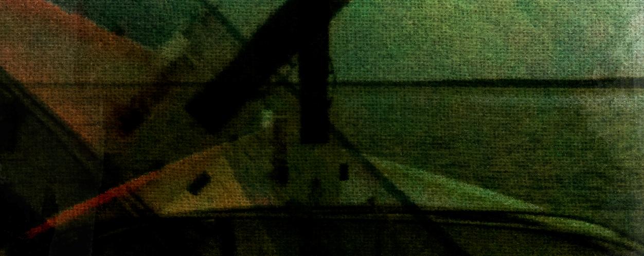 nellie-cropped.jpg