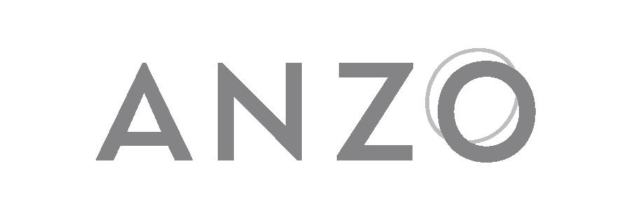 ANZO_logo_dark gray + light gray.png