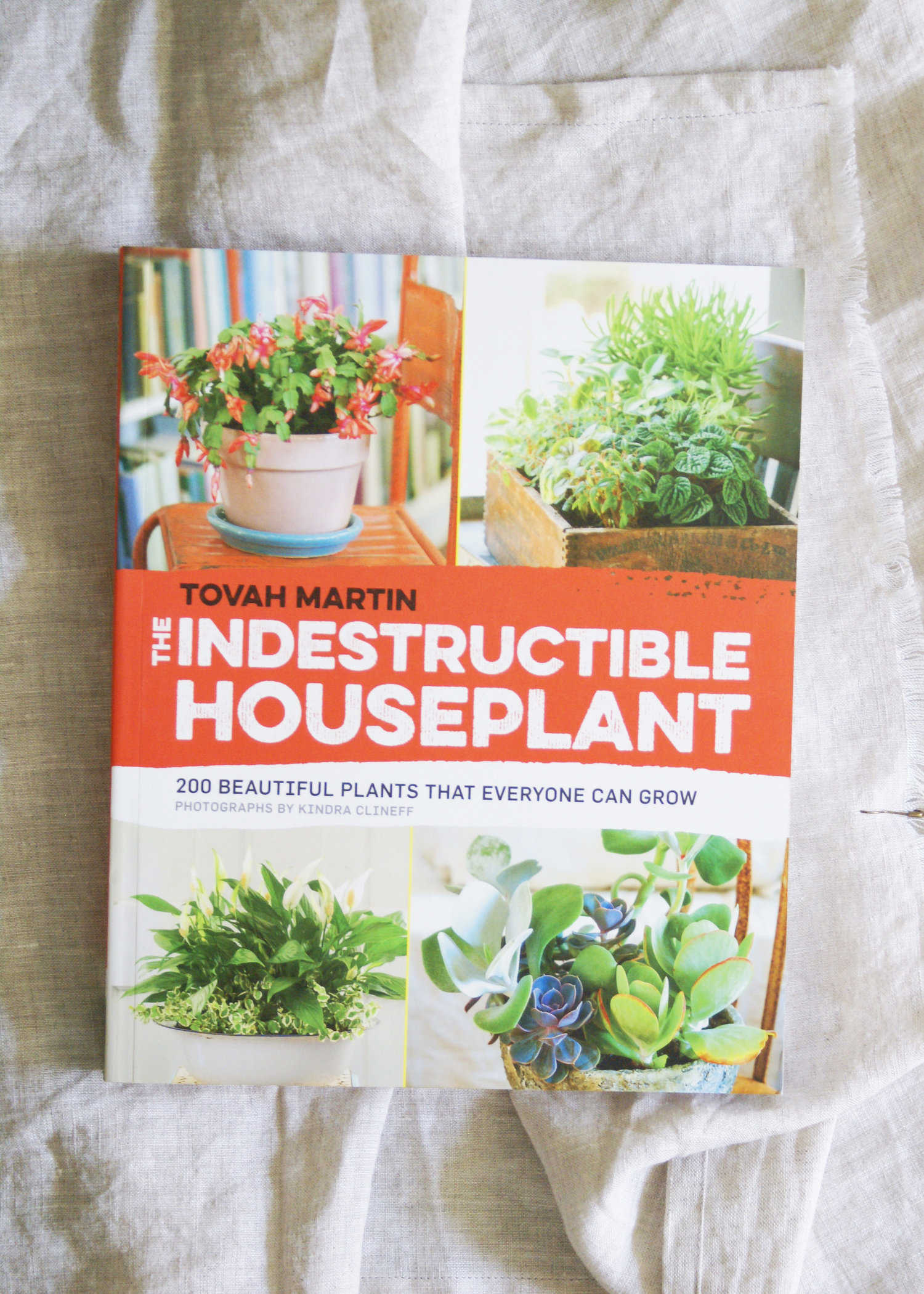 Book The Indestructible Houseplant 200 Beautiful Plants That