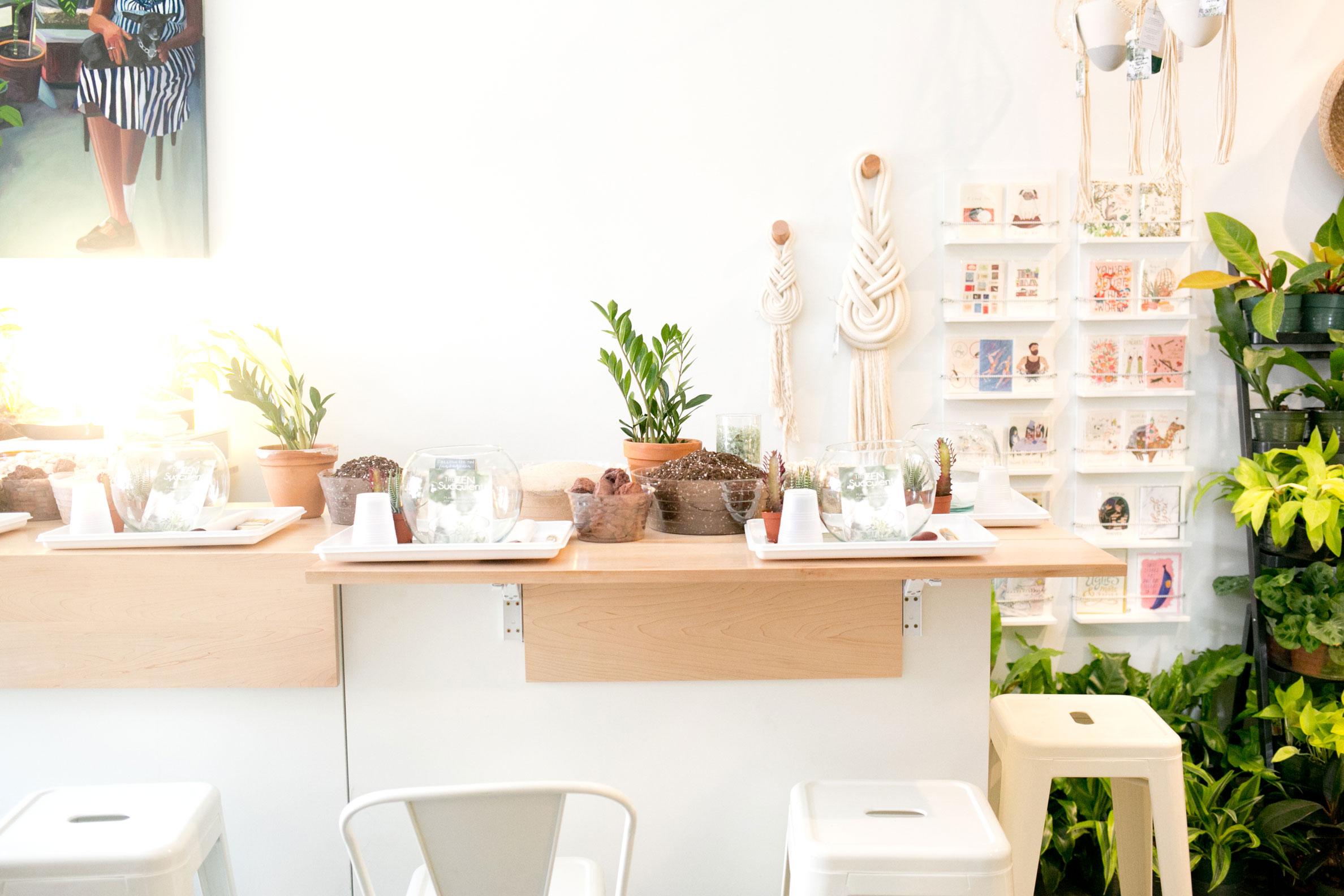 Terrarium-DIY-Bar-The-Zen-Succulent.jpg